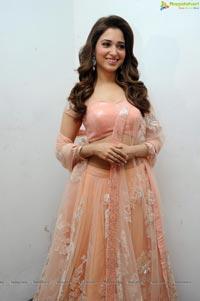 Telugu Actress Tamanna