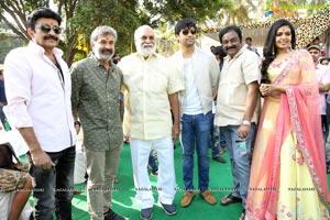 2 States Starring Adivi Sesh-Shivani Rajasekhar Film Launch