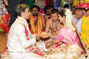 Daggubati Purandeswari Son Wedding Photos