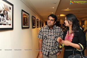 Focus Big Photo Exhibition