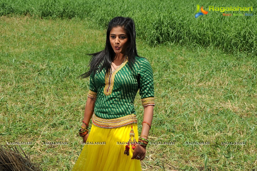 Priyamani Dancing Stills in Paddy Fields, Photo Gallery