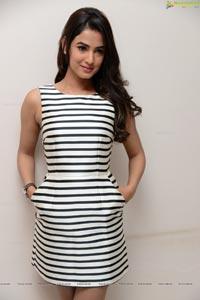 Bollywood Actress Sonal Chauhan