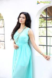 Meenakshi Dixit Bollywood