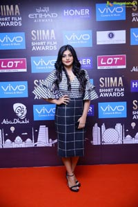 SIIMA 2017 Short Film Awards Chennai