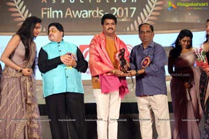 Cinegoers Association Film Awards 2017
