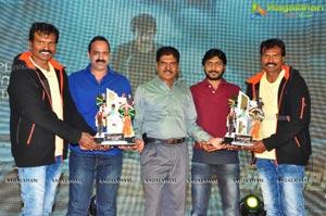 Bengal Tiger Platinum Disc