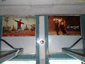 Bengal Tiger Train Branding Photos