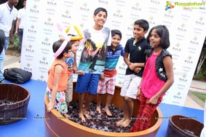 Grape Stomping Cake Mixing Novotel Hyderabad