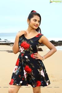 Sarovaram Telugu Cinema Stills