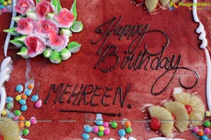 Mehreen's Birthday Celebrations