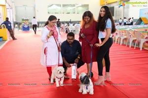 Petex India 2019