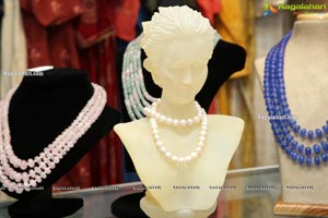 Akriti Elite Exhibition and Sale November 2020