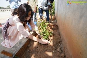 Raashi Khanna Celebrates Birthday by Planting Saplings
