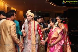 Haresh-Suzane Wedding Photos