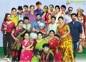 Annapurnamma Gari Manavadu Movie Gallery