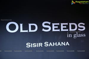Old Seeds In Glass - Kalakriti Art Gallery