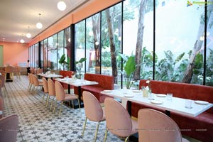 Tiger Lily - Cafe and Bistro