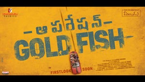 Operation Gold Fish Posters