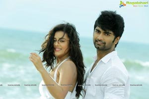 Duster1212 Movie Gallery