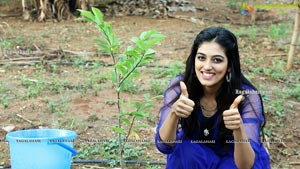 Cherasala Movie Team Tree Plantation pics