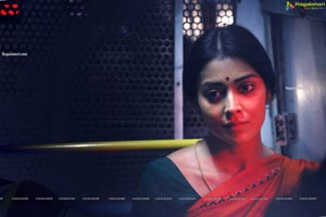 Shriya Saran's Gamanam Movie Gallery