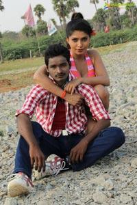 Kadapa Simham